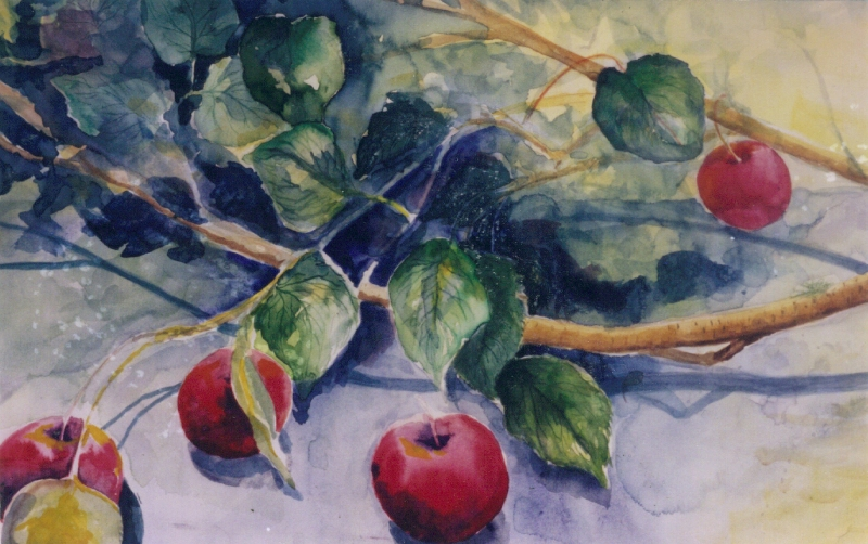 branch_apples