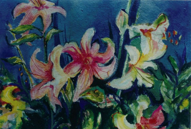 pink_lilies